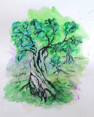 Painting - Olive Tree Grove by Clyde J Kell