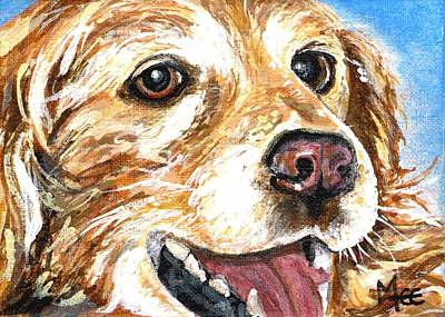 Oliver From Muttville Art Print by Mary-Lee Sanders