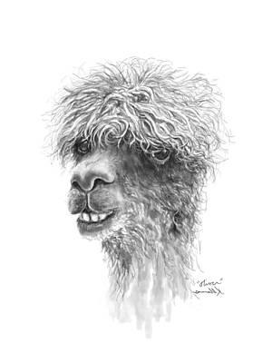 Drawing - Oliver by K Llamas