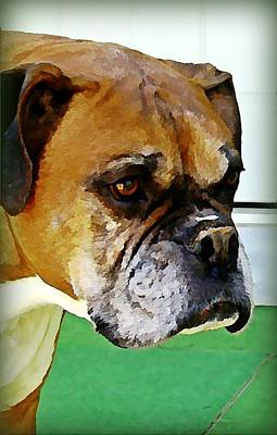 Pet Wall Art - Digital Art - Oliver  by Raven Hannah