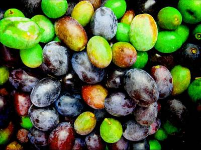 Photograph - Olives In The Raw by Dorothy Berry-Lound