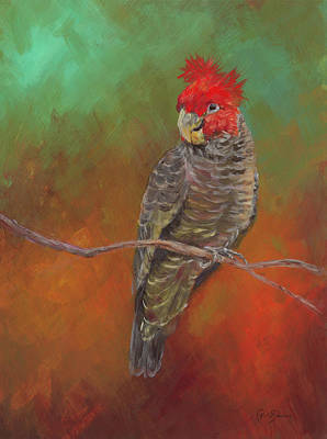 Cockatoo Wall Art - Painting - Ollie by Kirsty Rebecca