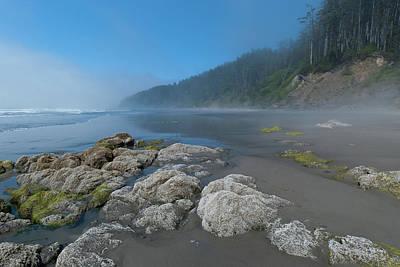 Photograph - Olympic National Park Beach Landscape by Cascade Colors
