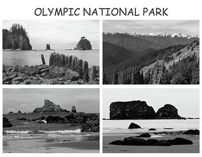 Photograph - Olympic National Park Collage Titled by Dan Sproul