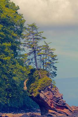 Photograph - Olympic National Park Stack by Dan Sproul