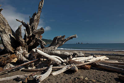 Photograph - Olympic Peninsula Coast by Avril Christophe
