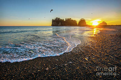 Photograph - Olympic Peninsula Sunset by Martin Konopacki