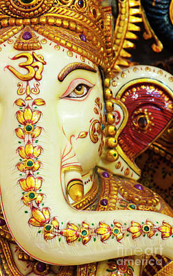 Photograph - Om Ganesha by Tim Gainey