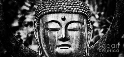 Buddha Wall Art - Photograph - Om Shanti by Tim Gainey