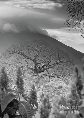 Photograph - Ometepe Island Nicaragua 1 Bw by Rudi Prott