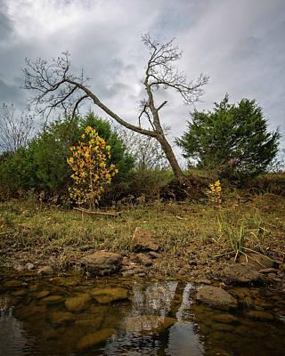 Photograph - Ominous by Alan Raasch