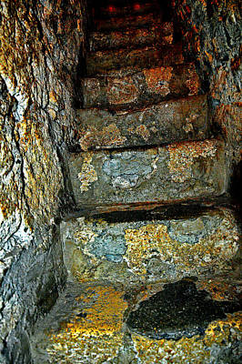 Frenzy Photograph - Ominous Staircase. Bran Castle - Dracula's Castle. by Andy Za