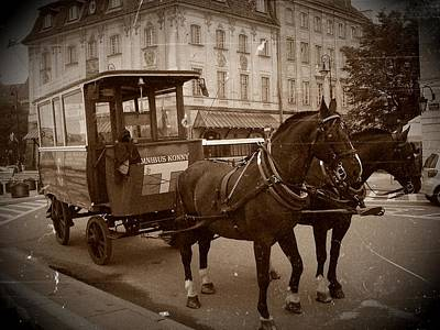 Photograph - Omnibus by Dora Hathazi Mendes