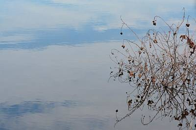 Photograph - On Blue Water by Maria Urso