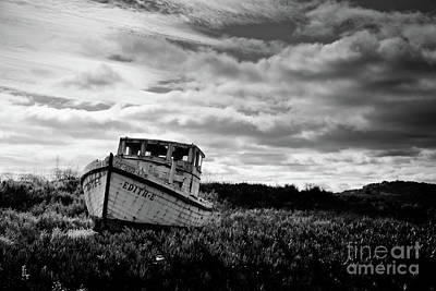 Photograph - On Dry Land by Ana V Ramirez