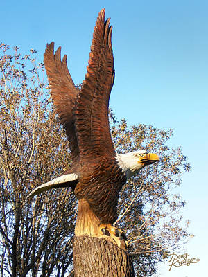 Photograph - On Eagles Wings II by Doug Kreuger