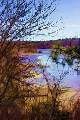 Photograph - On Frozen Pond by Roberta Byram