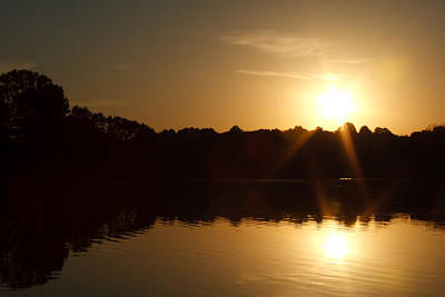 Photograph - On Golden Pond by James Reed