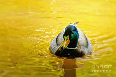 Duck Digital Art - On Golden Pond by Lois Bryan