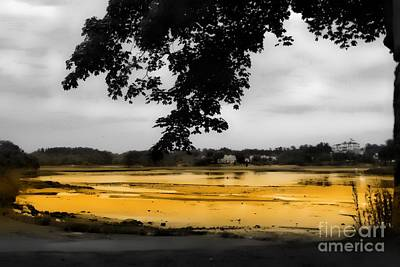 Photograph - On Golden Pond by Marcia Lee Jones