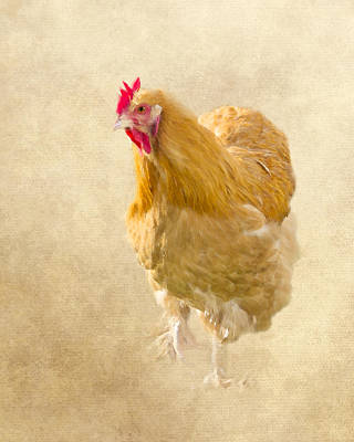 Chicken Photograph - On Grandpa's Farm by Inspired Arts