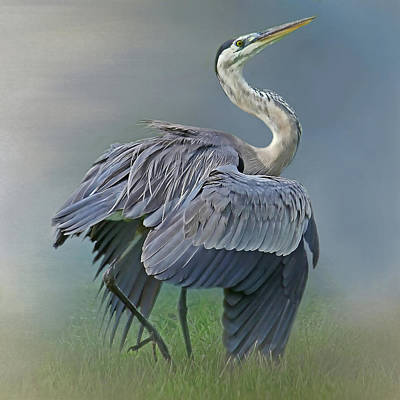 Photograph - On Guard - Great Blue Heron by HH Photography of Florida