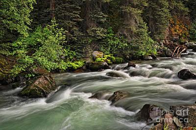 Photograph - On Henson Creek by Randy Rogers