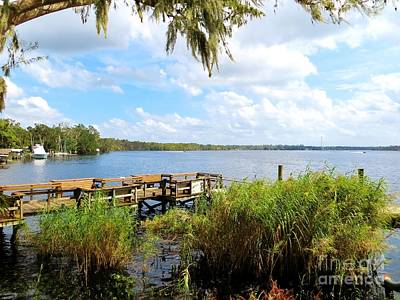 Photograph - On Shore At The St. John's River by Tim Townsend