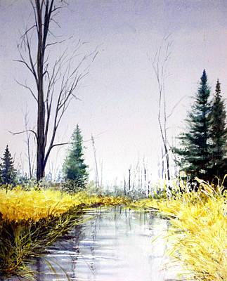 On Silver Pond Art Print