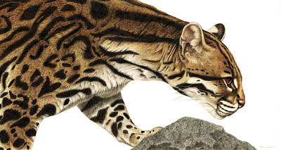 Wild Cat Painting - On Target Ocelot by Pat Erickson
