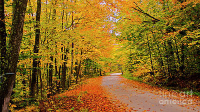 Photograph - On The Back Roads Of Groton. by Scenic Vermont Photography