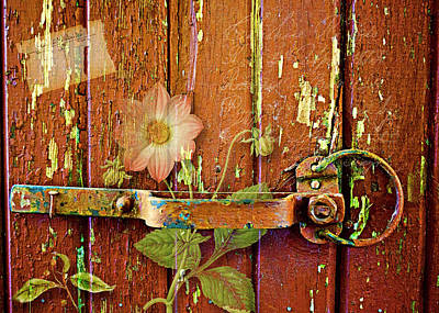 Photograph - On The Barn Door by Larry Bishop