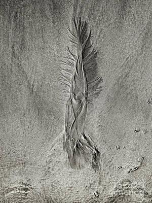 Photograph - On The Beach 1 by Nicholas Burningham