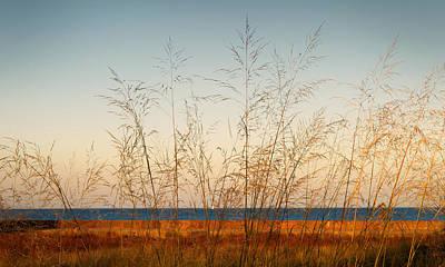 Photograph - On The Beach by Milena Ilieva