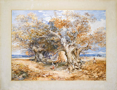 Drawing - On The Borders Of Sherwood Forest by George Cattermole