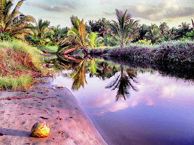 Photograph - On The Caribbean by Charles McKelroy