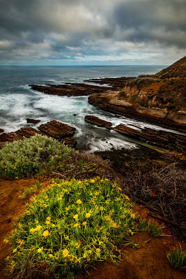 Central Coast Photograph - On The Coast by Dan Holmes