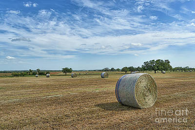 Haybales Photograph - On The Farm In Texas by Tod and Cynthia Grubbs