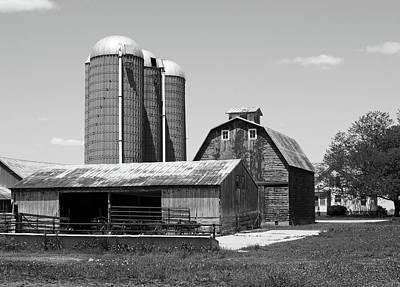 Photograph - On The Farm by Tom Druin