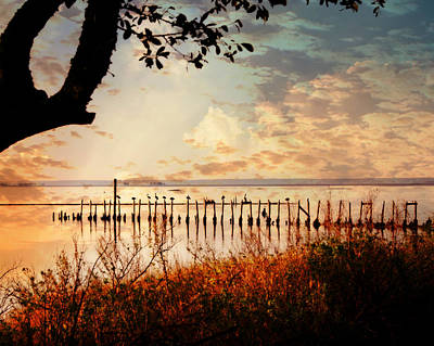 Photograph - On The Gulf by Marty Koch