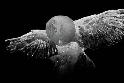 Photograph - On The Hunt. by Jouko Lehto