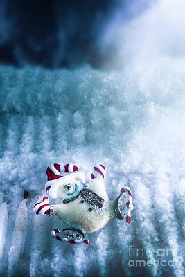 Snowman Photograph - On The Ice by Jorgo Photography - Wall Art Gallery