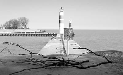 Photograph - On The Lake Shore by Milena Ilieva