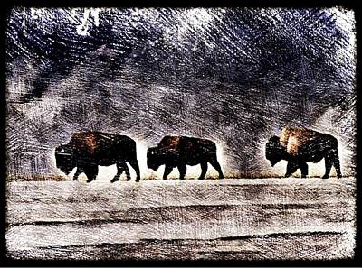 Bison Digital Art - On The Move by Chris Burke