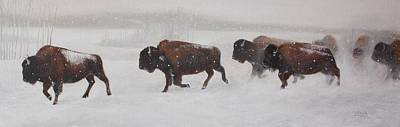 Buffalo Painting - On The Move by Tammy  Taylor
