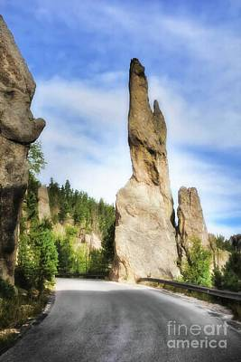 Photograph - On The Needles Highway 1 by Mel Steinhauer