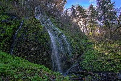 Photograph - On The Path To Multnomah Falls by Lynn Bauer
