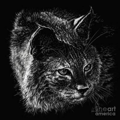On The Prowl- Bobcat Original