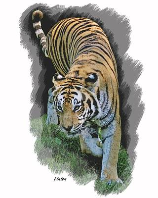 Asian Tiger Digital Art - On The Prowl  by Larry Linton