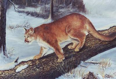 On The Prowl Art Print by Lynne Parker